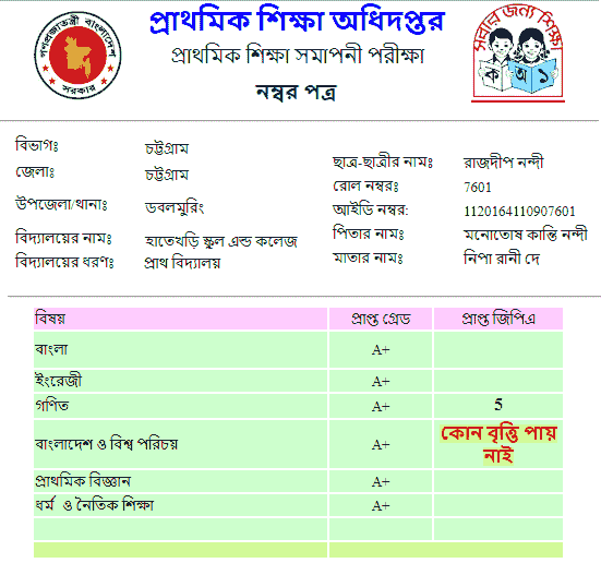 PSC Result 2020 with full Marksheet dpe.gov.bd