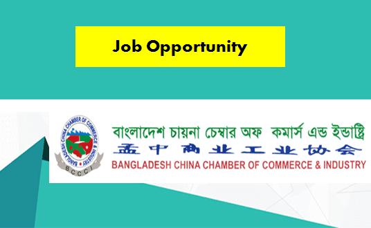 BCCCI Job Circular