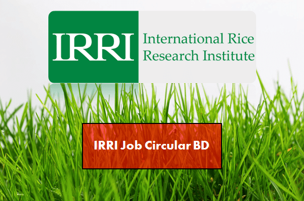 IRRI Jobs in Bangladesh